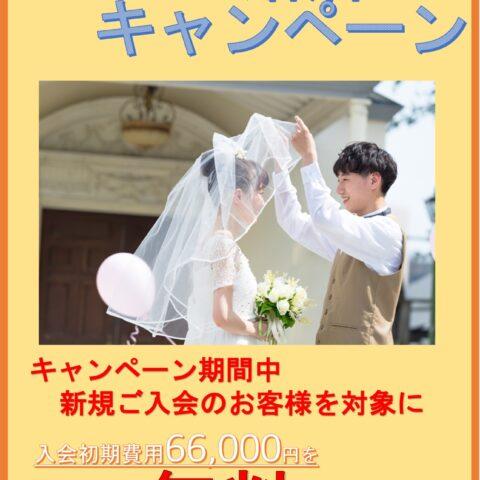 大好評!結婚相談wanpakuよりキャンペーンのお知らせ